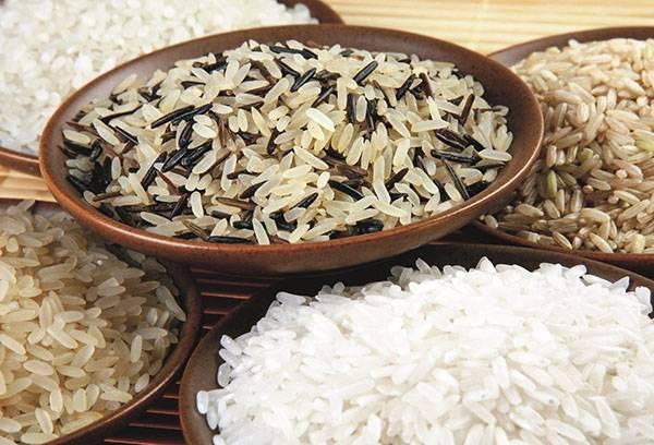 Différents types de riz