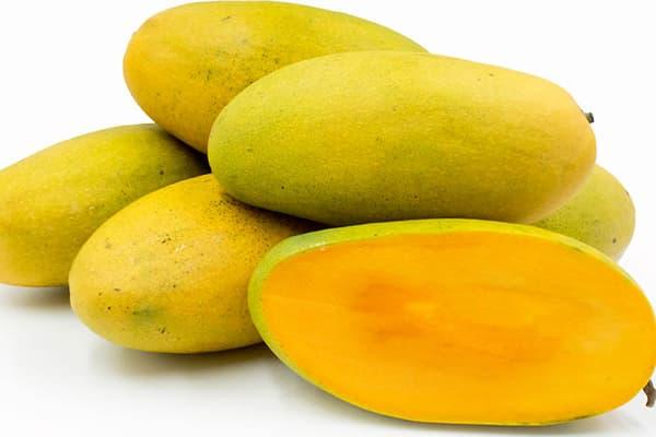 Dashery à la mangue