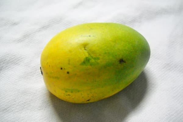 Mangue Chausa