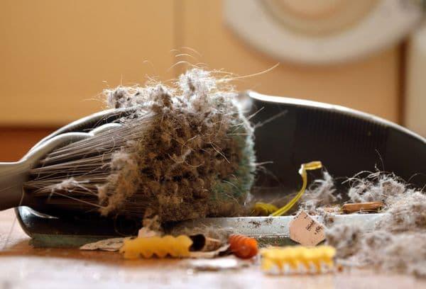 ordures après le nettoyage