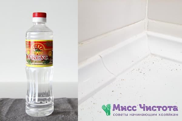 Vinaigre contre la moisissure dans la salle de bain
