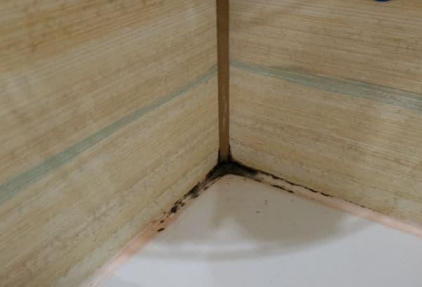 Moisissure dans la salle de bain entre les coutures