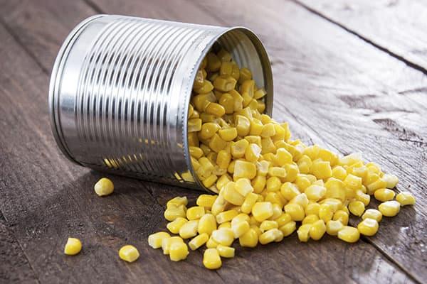 Maïs en canette