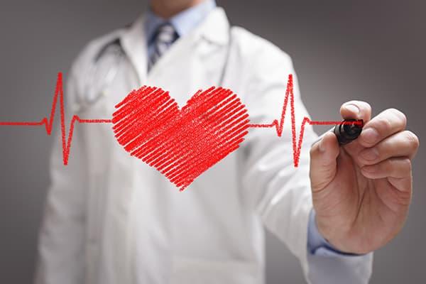 Protection du coeur et des vaisseaux sanguins