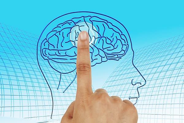 Maintenir un système nerveux sain
