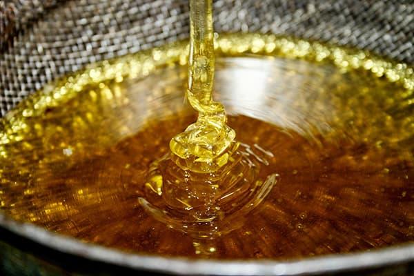 Filtre à miel